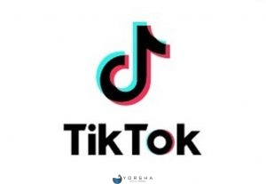 Jasa Tambah 600 Followers Tik Tok