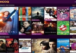 Pembuatan Website Streaming Film + Database Film + 2 Domain