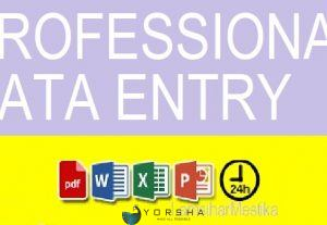 Online / Offline data entry PDF to Excel, PDF to word, Copy/Paste work, Ms. Excel, Ms. Word, Ms. Power Point, & any type of data entry
