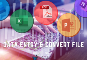 DATA ENTRY & CONVERT FILE